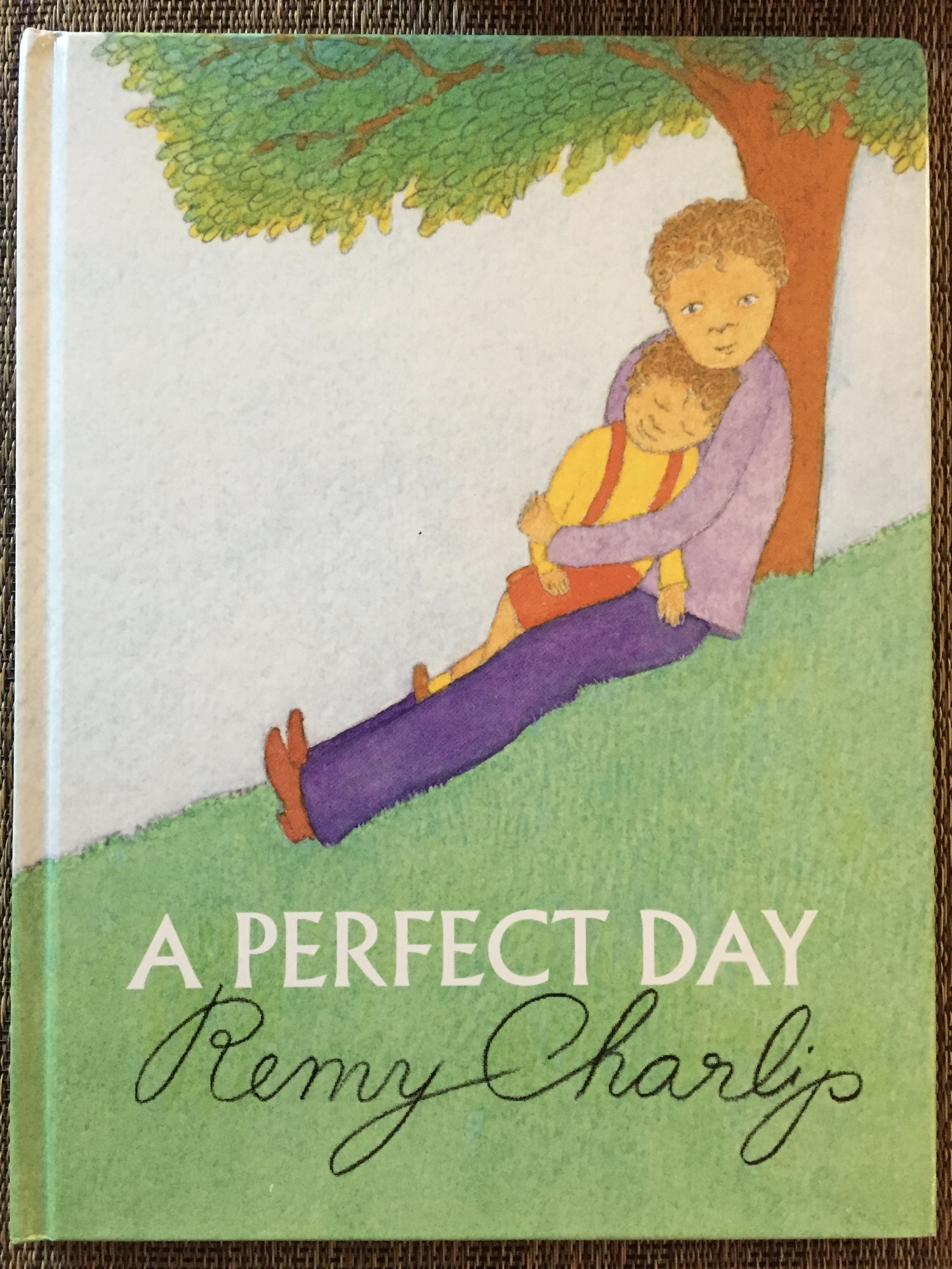 A Perfect Day by Remy Charlip